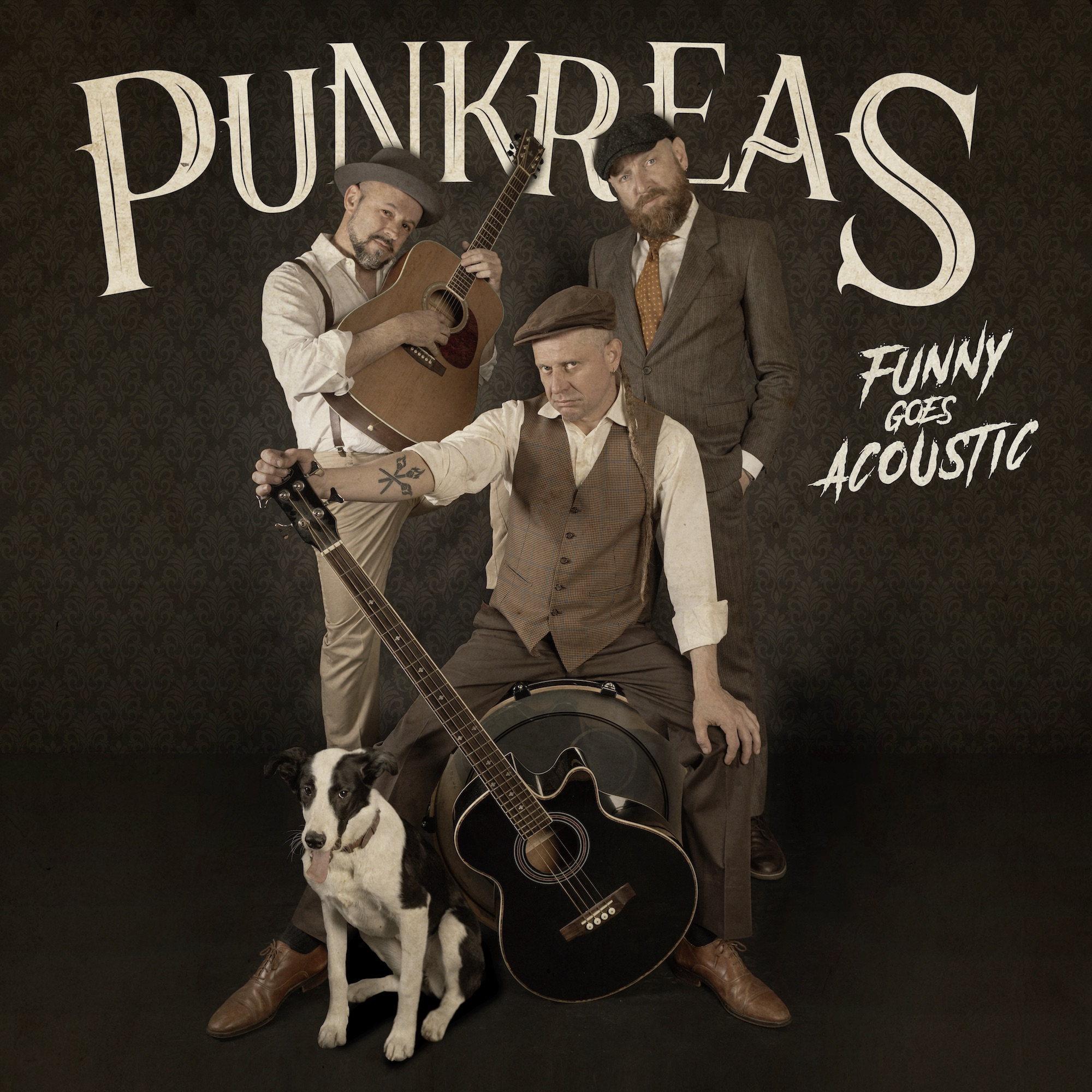 PUNKREAS Cover ALbum Funny Goes Acoustic
